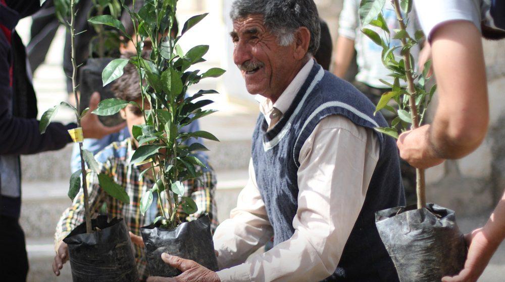 لبخندهای پرتقالی در روستای گلوزه