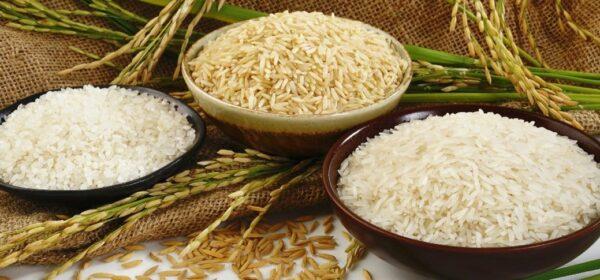 بازار باسلام - basalam - پینهاد محصول - برنج