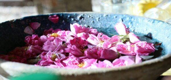 باسلام|basalam- عرقیات گیاهی