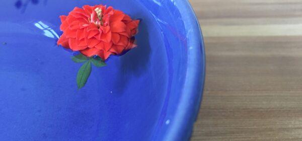 a-pottery-bowl