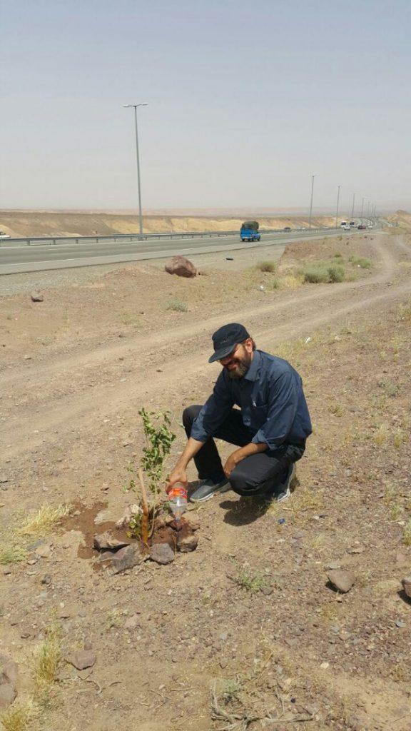آب دادن درخت توت ۹۶۰