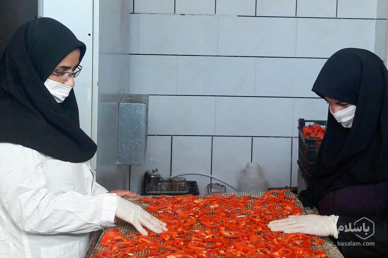 تولید پودر گوجه-بانویی که با گوجه خشک پولدار شد-مجله باسلام