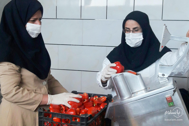 دستگاه خشک کن -پودر گوجه-مجله باسلام