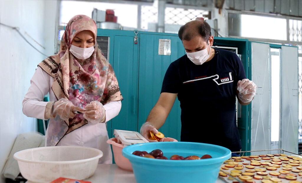مهدی شیاسی و همسرش در غرفه گرین فروت-چیپس میوه به جای پفک-مجله باسلام